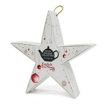 ETS Vánoční bio hvězda Červená se stříbrnou 6 bio pyramidek